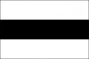 Flag_Delft